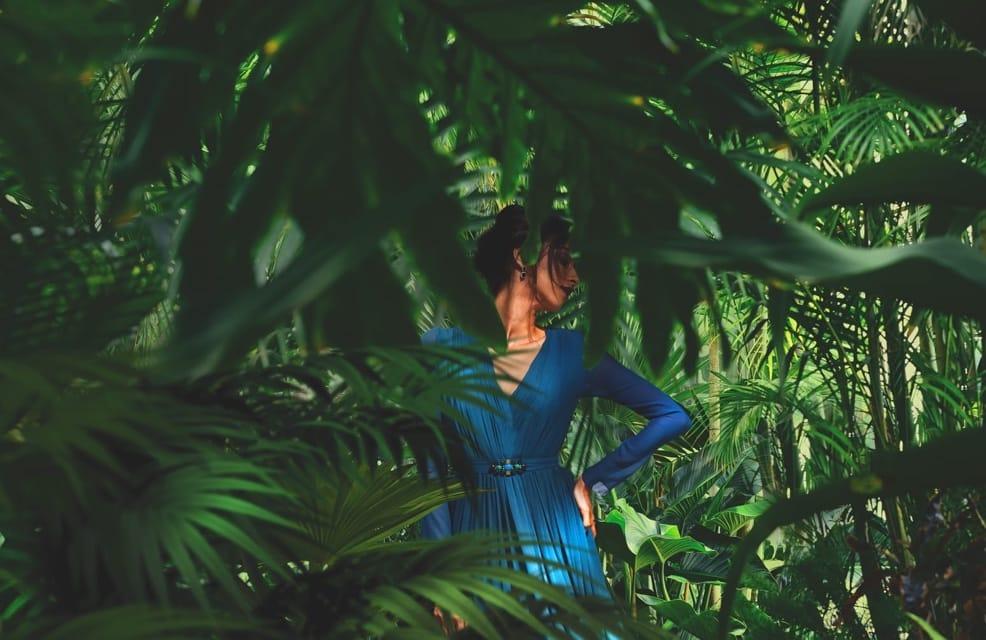 alya rainforest